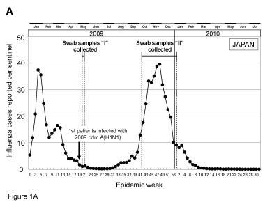 New study sheds light on evolution of 2009 pandemic influenza A(H1N1) virus in Japan