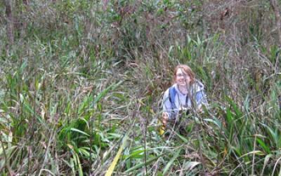 Global plant diversity hinges on local battles against invasive species