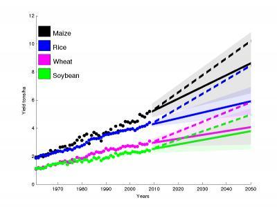 Yield trends insufficient to double global crop production by 2050