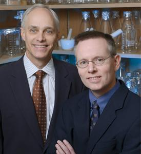 UT Southwestern scientists discover new clues to how weight loss is regulated