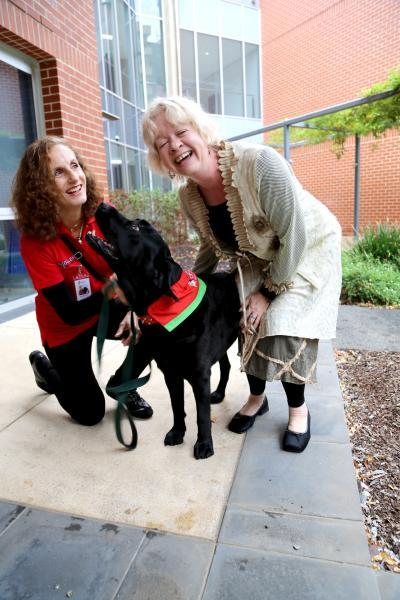 Can animals really help people in hospitals, aged care?