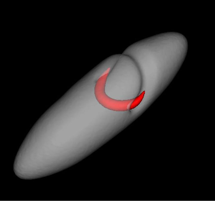 Deceptive-looking vortex line in superfluid led to twice-mistaken identity