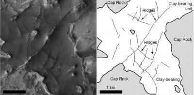 Fossilized conduits suggest water flowed beneath Martian Surface