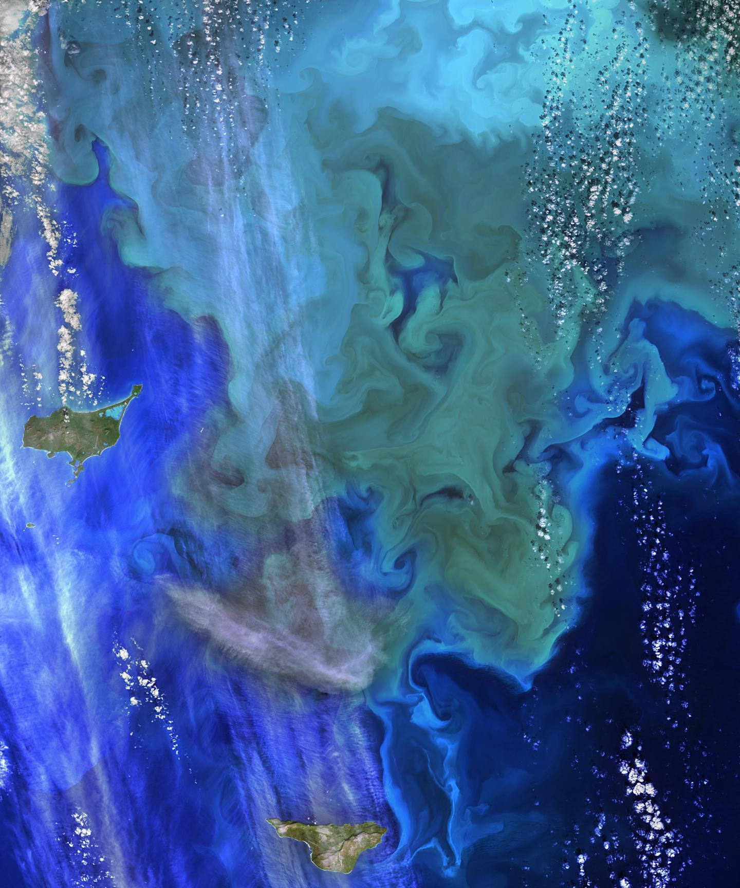 NASA ocean data shows 'climate dance' of plankton