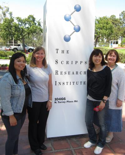 Scripps Research scientists find an important molecular trigger for wound-healing