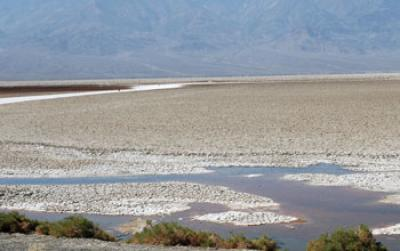 Badwater Basin: Death Valley microbe thrives there