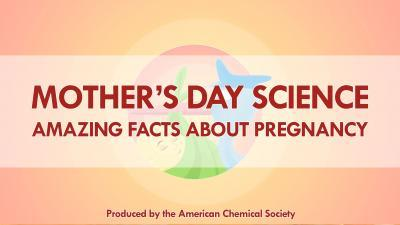 Mother's Day science: Reactions highlights amazing facts about pregnancy -- video