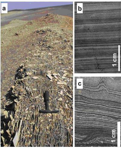 Discovery of primary exhalative hydrothermal dolostone in the Santanghu area, Xinjiang