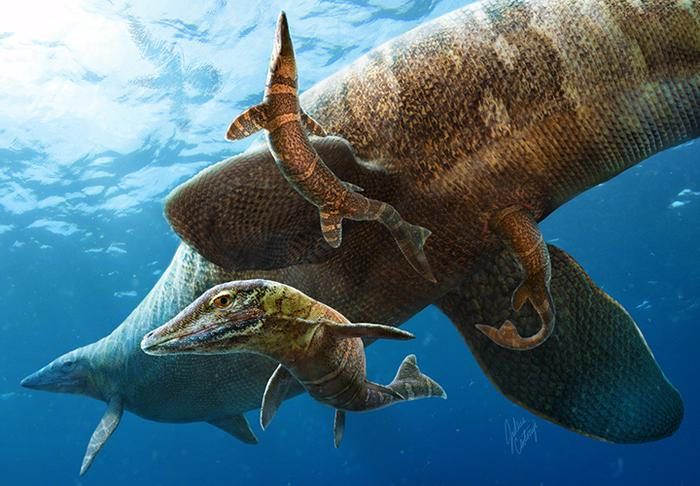 65 MYA mosasaurs show what life was like for newborn giant sea lizards during the age of the dinosaurs