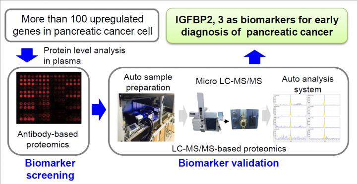 Early pancreatic cancer detection using blood biomarkers